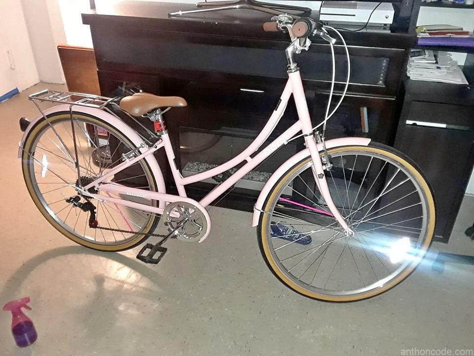 bicicleta-clasica-de-velocidades