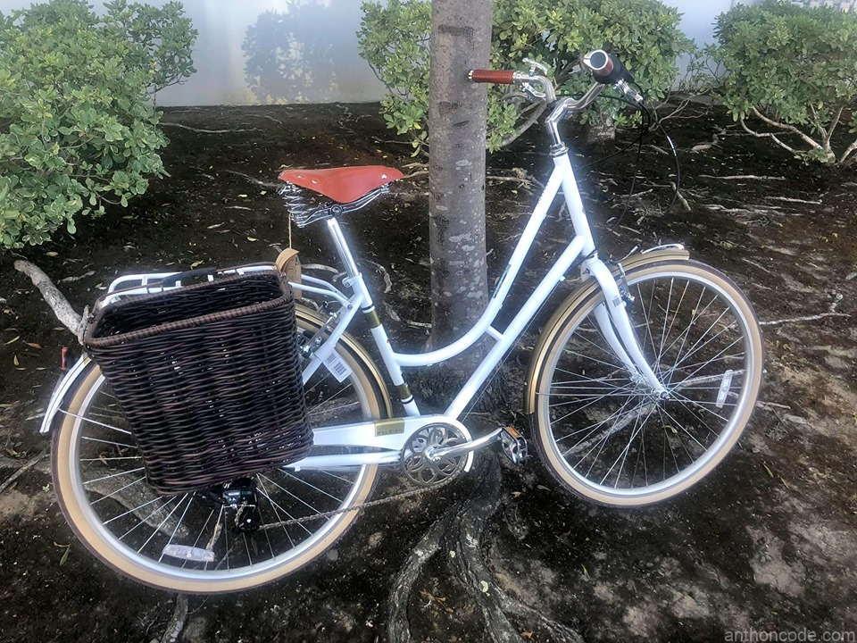 hermosa-bicicleta-para-dama